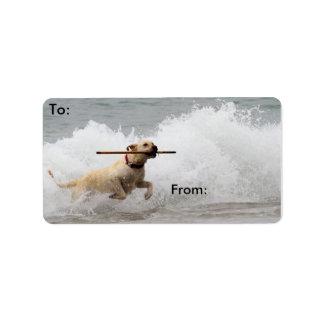 Labrador - Yellow - Go Fetch! Address Label