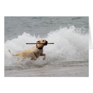 Labrador - Yellow - Go Fetch! Greeting Card