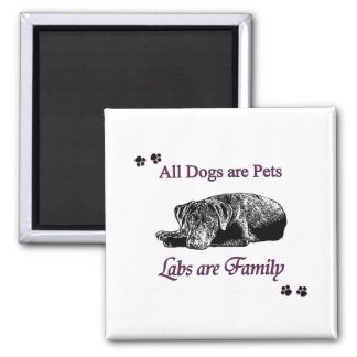 Labs are Family Magnets