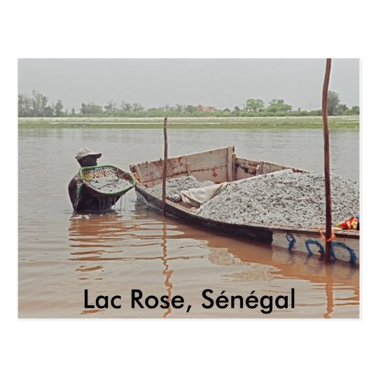 Lac Rose, Sénégal Postcard