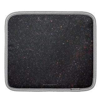 Lacerta iPad Sleeve
