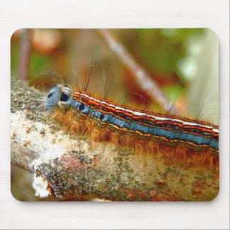 Lackey Moth Caterpillar Mouse Mat
