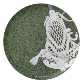 Lacrosse stick on grass plate