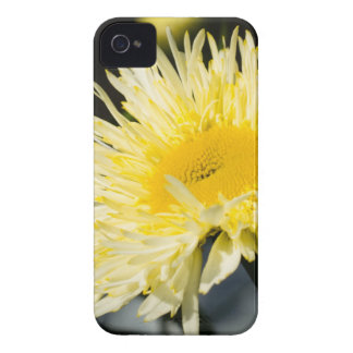 Lacy Daisy iPhone 4 Case-Mate Case