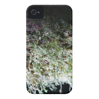Lacy Moss iPhone 4 Covers