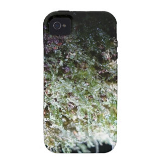 Lacy Moss iPhone 4 Cover