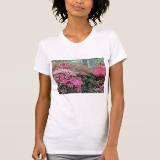 Ladies' Azalea T-Shirt