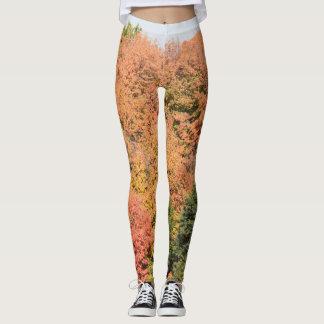 Ladies leggings Fall leaf pattern