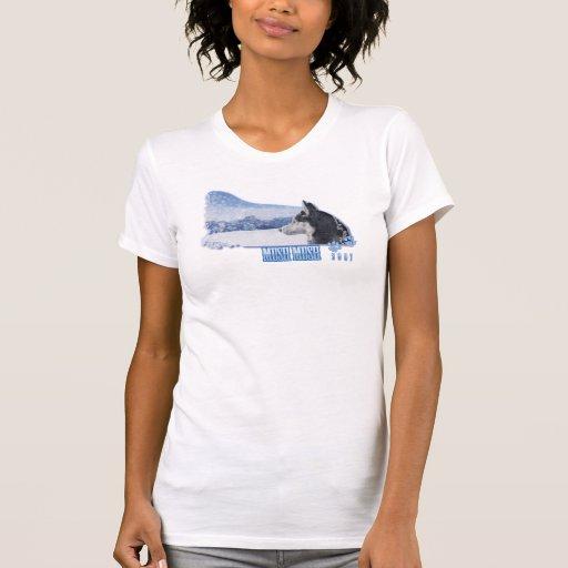 Ladies Raglan T Shirts