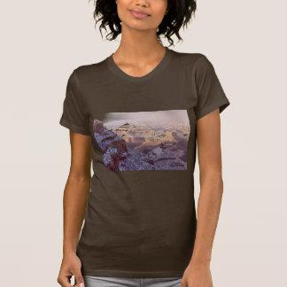 Ladies T / Grand Canyon Winter T-Shirt