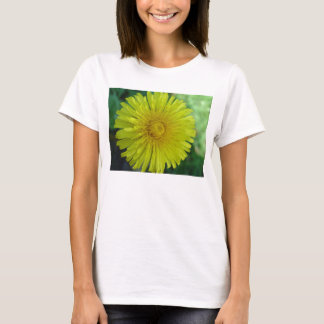 Ladies T-Shirt - Dandelion