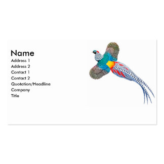 Lady Amherst Pheasant Business Card