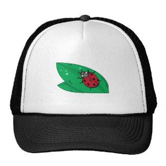 Lady Beetle Trucker Hat