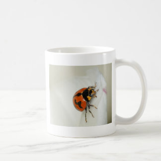 Lady Beetle Climbing High Coffee Mug