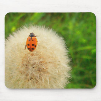 Lady(bug) and the  (Dandy)lion Mouse Pad