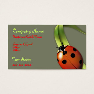 Lady Bug business card