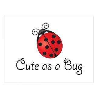 Lady Bug - Cute as a Bug Postcard