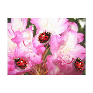 Lady bug heart spot pink floral wall canvas print