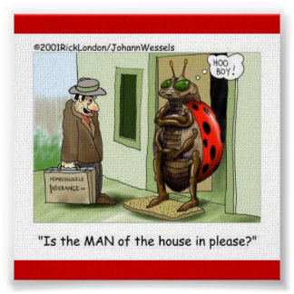 Lady Bug Meets Male Chauvinist Poster