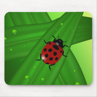Lady bug mouse mat
