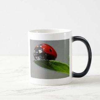 lady bug 11 oz magic heat Color-Changing coffee mug