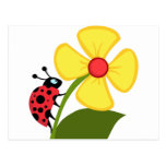 Lady Bug on Yellow Flower Postcard