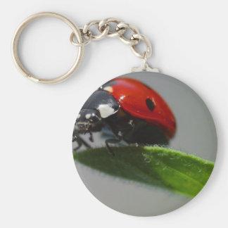 Lady Bug Perched on Leaf Key Chain