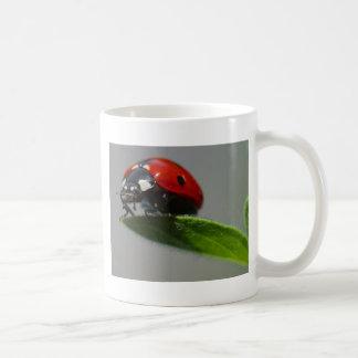 Lady Bug Perched on Leaf Coffee Mugs