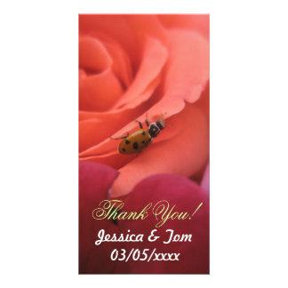 Lady Bug Roses Wedding Photo Card