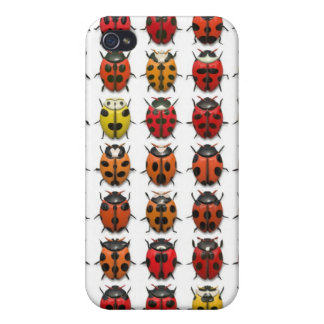 Lady Bugs 1 iPhone Case iPhone 4/4S Case