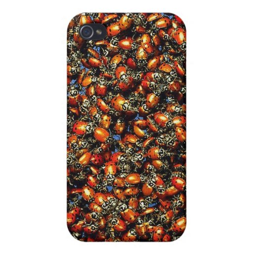 Lady bugs ! iPhone 4/4S cover
