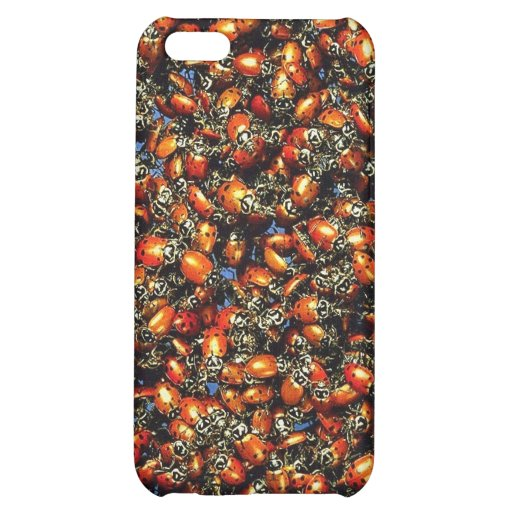 Lady bugs ! iPhone 5C covers