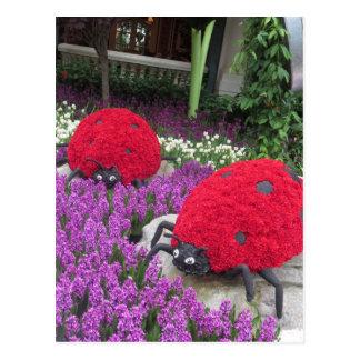 Lady BUGS n pink FLOWERS Butterfly Garden Gifts Postcard