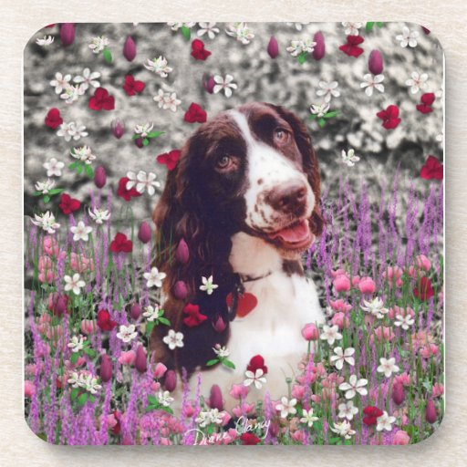 Lady in Flowers - Brittany Spaniel Dog Beverage Coasters