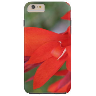 """Lady in Red"" Red Canna Lily IPhone Case"
