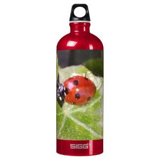 Lady nose ladybird Custom Traveller (1.0 L), Weis SIGG Traveller 1.0L Water Bottle