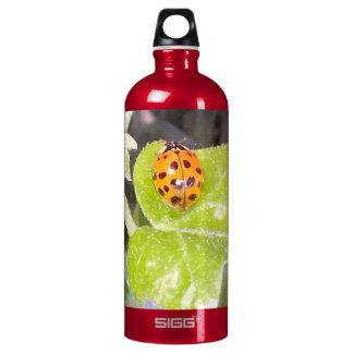 Lady nose ladybird water bottle SIGG SIGG Traveller 1.0L Water Bottle