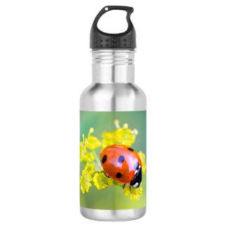 lady on top 532 ml water bottle