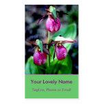 Lady Slipper I, Pink Magenta Green Garden Delight Pack Of Standard Business Cards