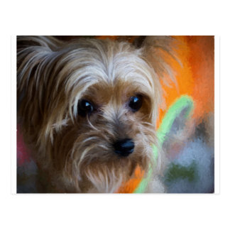Lady Yorkshire Terrier Postcard