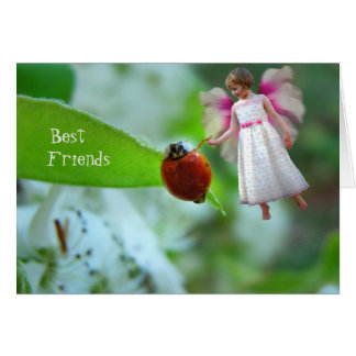 Ladybird and Pixie Best Friends card