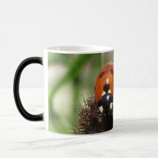 Ladybird - Black And White Morphing Mug