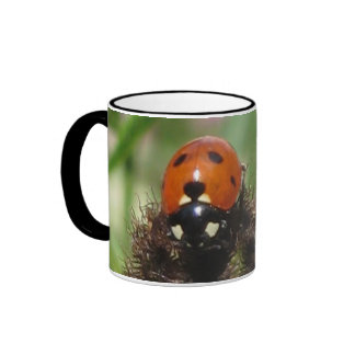 Ladybird - Black Ringer Mug 444ml