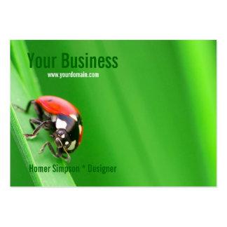 Ladybird Business Card Template