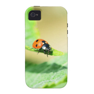 Ladybird iPhone 4 Covers