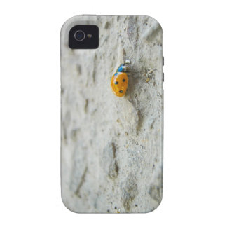 Ladybird Case-Mate iPhone 4 Covers