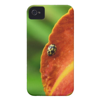 Ladybird Case-Mate iPhone 4 Cases