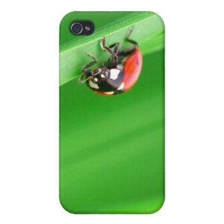 Ladybird Case For iPhone 4