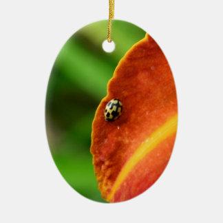 Ladybird Ceramic Oval Decoration