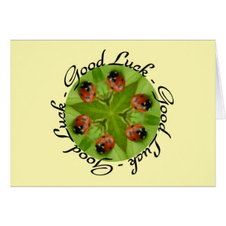Ladybird circle card